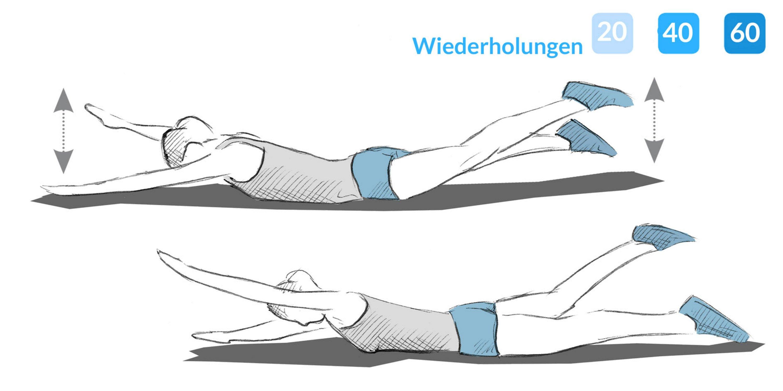 Anleitung zur Übung Käfer.