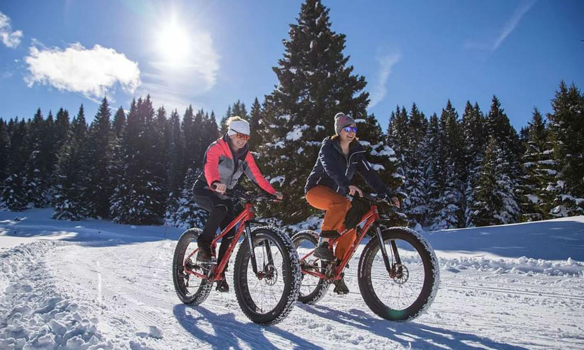 Cicliste con Fatbike nella foresta innevata.