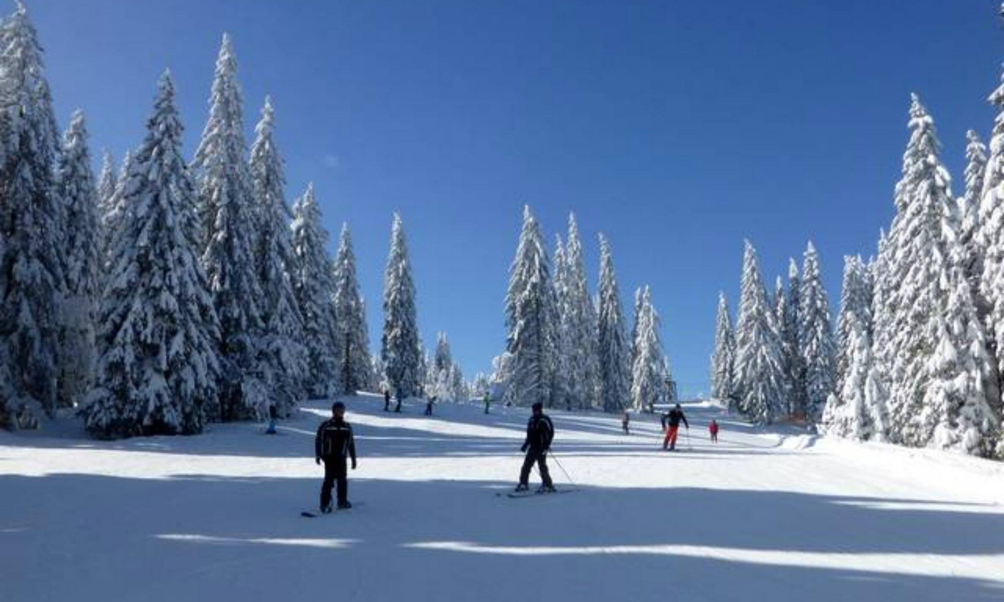 Skifahrer auf einer tief verschneiten Piste im Wald des Skigebiets Feldberg.
