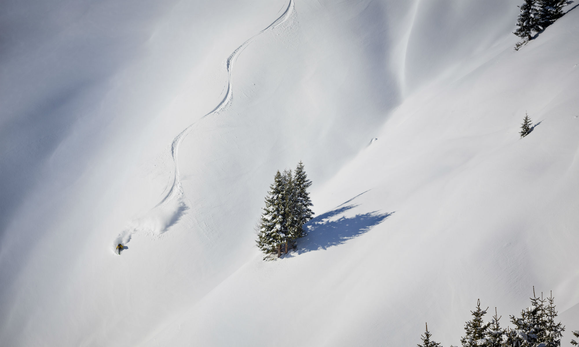 A freeride skier drawing turns into powder snow in Fieberbrunn.