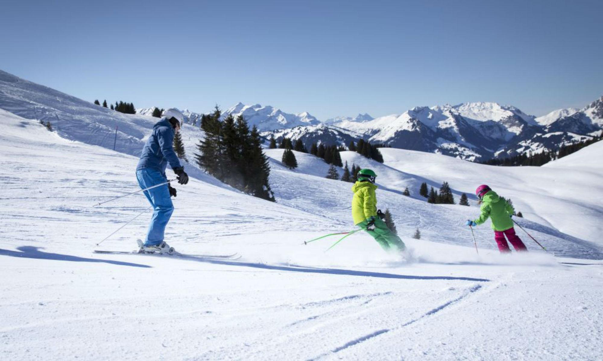 1 Erwachsene und 2 Kinder beim Skifahren am Saanerslochgrat.