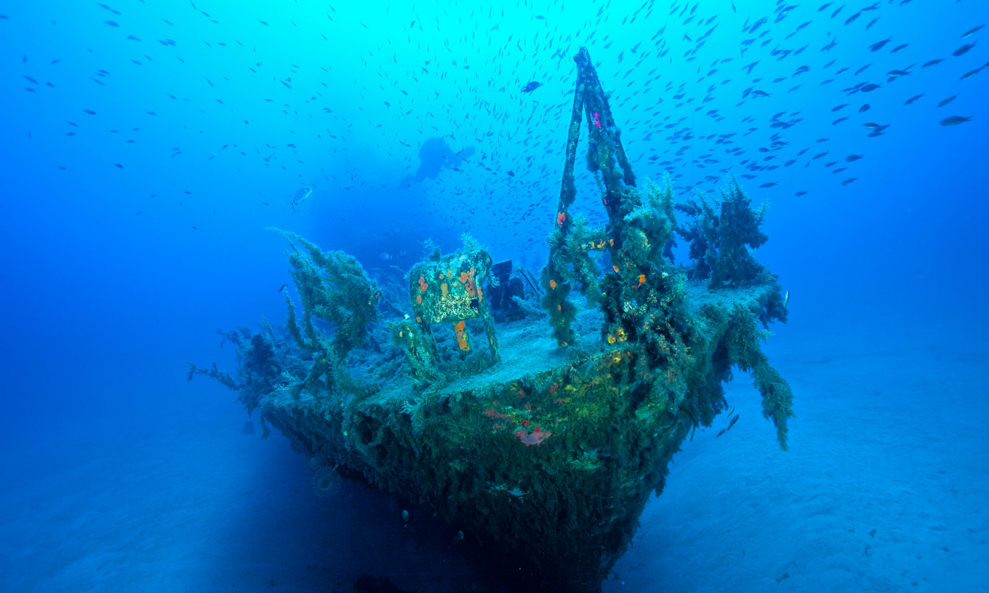 One of Malta's many sunken shipwrecks is visible on the seabed.