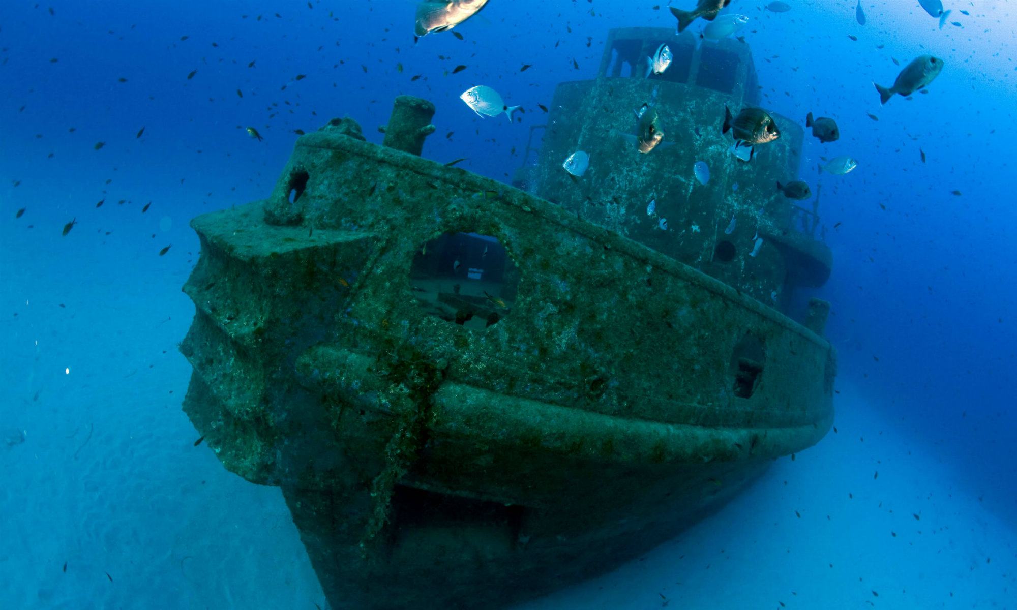 The Rozi Tugboat shipwreck is visible on the seabed.
