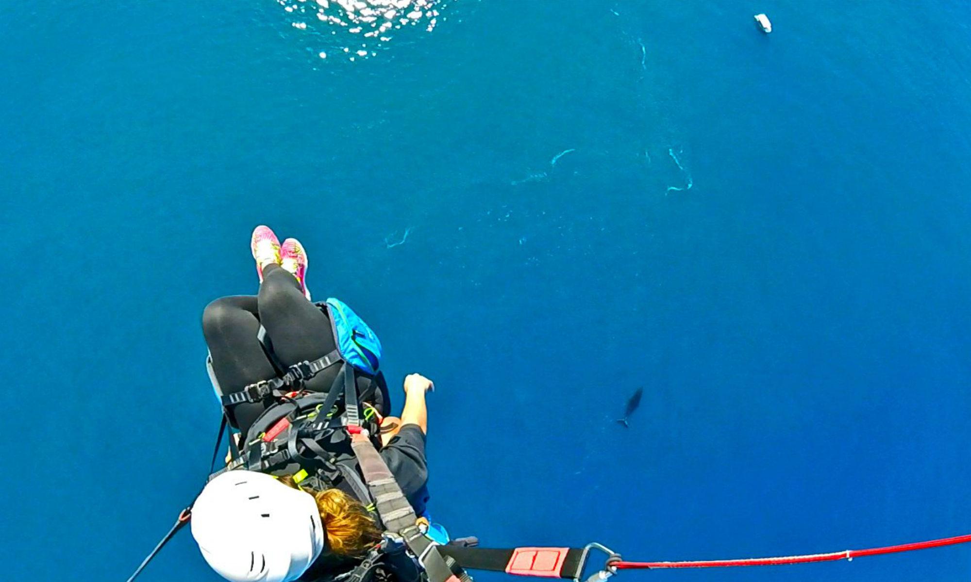 Un parapentiste survole l'océan Indien et aperçoit une baleine.