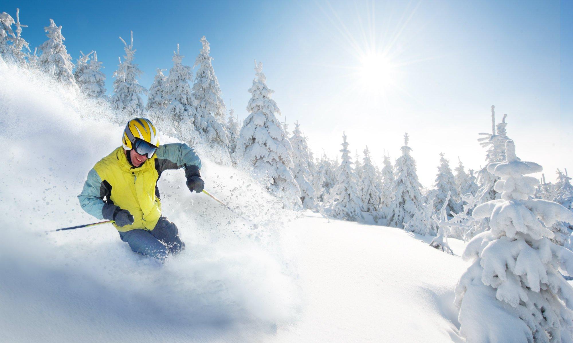 Uno sciatore pratica lo sci fuori pista sulla neve fresca, passando lungo boschi innevati.