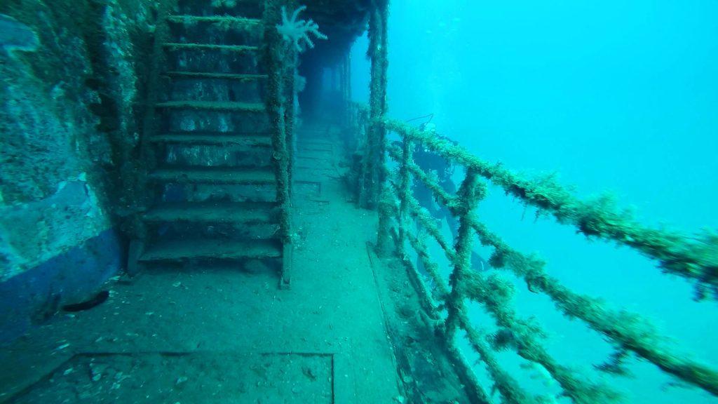 Die Treppen eines Wracks in Kroatien sind mit Algen bedeckt.