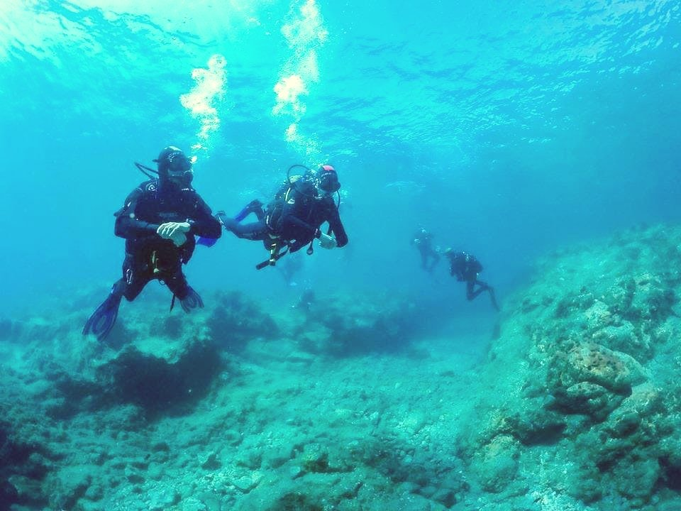 A group of divers are scuba diving on the Canary Islands.