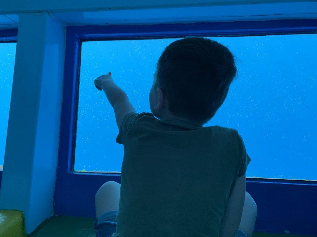 Ein kleiner Junge beobachtet Delfine und Wale auf den Kanarischen Inseln.