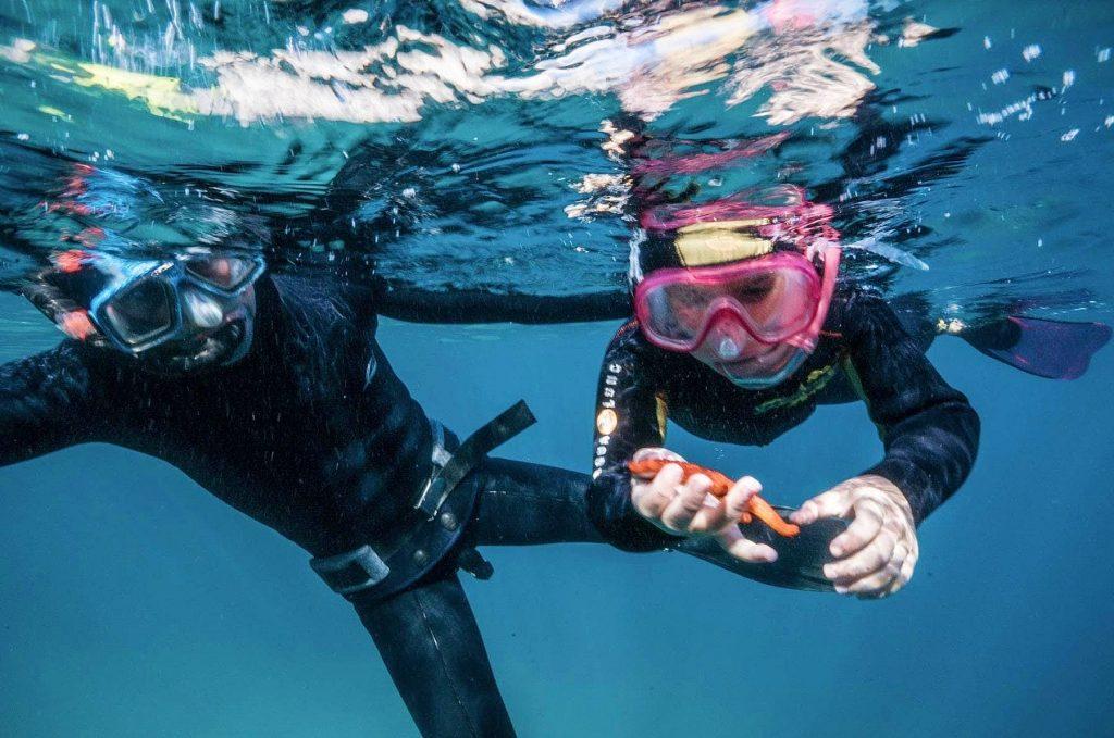Zwei Kinder entdecken einen Seestern beim Schnorcheln im Nationalpark Calanques.