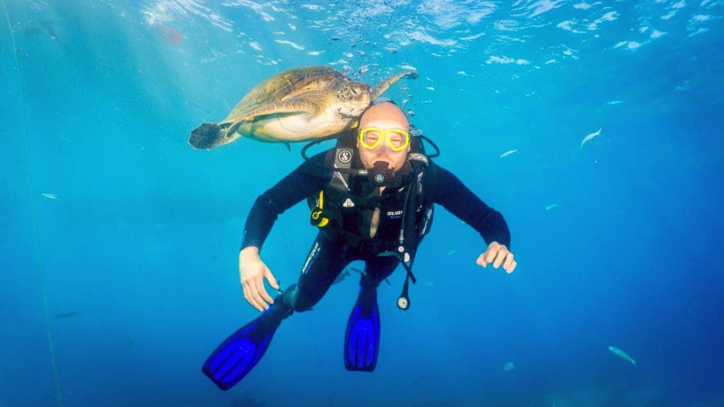A man comes across a sea turtle while scuba diving in Spain.